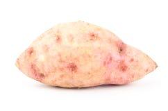 bonbon à pomme de terre Image stock