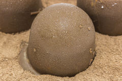 Bonbon шоколада Стоковая Фотография RF