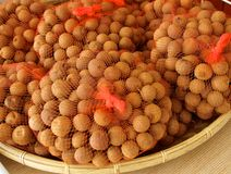 Bonbon getrocknete Longanfruchtnahaufnahme Stockfotografie