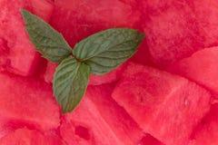 Bonbon, Minze und Melone stockbilder