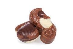 Bonbons που διαμορφώνονται βελγικά θαλασσινά κοχύλια που απομονώνονται ως Στοκ Εικόνες