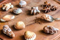 Bonbons au chocolat de luxe sous forme de fruits de mer Image libre de droits