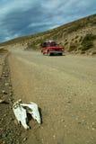 Bonce em uma estrada natual com coletor vermelho Imagens de Stock Royalty Free