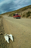 Bonce at a natual road with red pick-up Royalty Free Stock Images