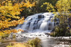 Bond Falls in Autumn - Upper Peninsula of Michigan. Bond Falls is surrounded with autumn foliage as the Ontonagon River flows under shadow and sunlight. Bond Royalty Free Stock Images