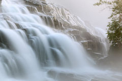 Bond Falls in Fog royalty free stock photo