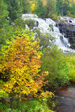 Bond Falls Michigan Royalty Free Stock Images
