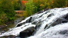 Bond Falls Northwoods Michigan. Beautiful Bond Falls flows through the forests of northwoods Michigan stock video footage