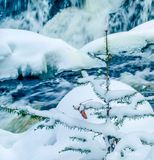 Bond Falls in winter. Located in the upper peninsula of Michigan Royalty Free Stock Image