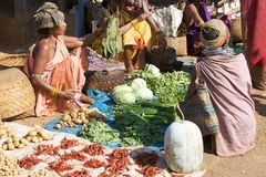 Bonda tribal woman at the Onokudelli market Stock Image