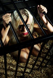 Bondage art style with beautiful nude girl in cage Stock Photos