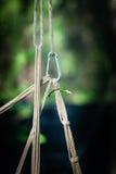 Bondage ropes. On dark green background royalty free stock images