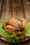 Bondage shibari roasted chicken with salad leaves on red plate o Royalty Free Stock Photos