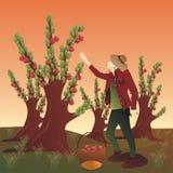 Bondaktig plockning och lyssna till musik vektor illustrationer