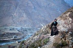 bondaktig tibetan kvinna för korg Arkivbilder
