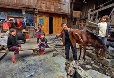 Bondaktiga bönder för asiatisk familj i landsbygder av den sydvästliga hakan Fotografering för Bildbyråer