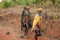 Bondas tribal ladies going to the Ankudeli market Royalty Free Stock Images