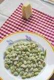 Bondbönor och den roman pecorinoen för 1st kan dagen Arkivfoton