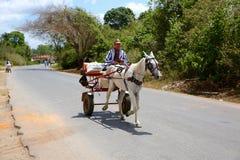 Bonde Driving Horse-Drawn Wagon, Kuba Royaltyfri Fotografi