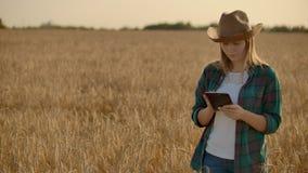 Bonde f?r ung kvinna som arbetar med minnestavlan i f?lt p? solnedg?ngen ?garen av ett sm? och medelstora f?retagbegrepp lager videofilmer