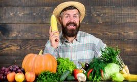 Bonde med organiska självodlade grönsaker Väx organiska skördar Gemenskapträdgårdar och lantgårdar Sund livsstil homegrown royaltyfri fotografi