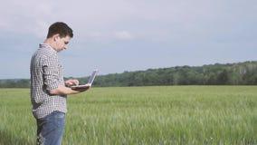 Bonde med rutigt skjortaanseende för svart hår och а i fältet av grönt vete och arbete med en anteckningsbok i fältet stock video