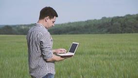 Bonde med rutigt skjortaanseende för svart hår och а i fältet av grönt vete och arbete med en minnestavla i fältet stock video
