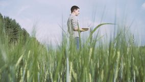 Bonde med rutigt skjortaanseende för svart hår och а i fältet av grönt vete och arbete med en minnestavla i fältet arkivfilmer