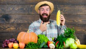 Bonde med utseende för byinvånare för självodlat skördbonde lantligt Väx organiska skördar Gladlynt skäggig bondehåll för man arkivfoton