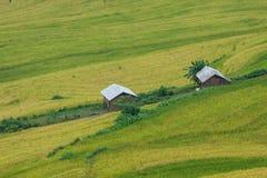 Bonde och lantgård Arkivfoto