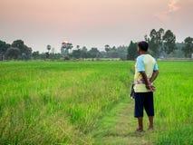 Bonde på risfältet Arkivfoto
