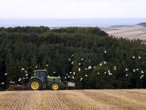 Bonde på traktoren i jordbruks- fält Arkivbild
