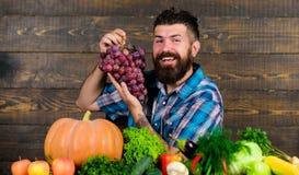 Bonde som är stolt av skördgrönsaker och druvor Lantbruk- och plockningbegrepp Den uppsökte mannen rymmer druvor trä royaltyfri fotografi