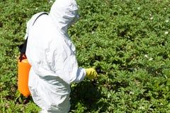 Bonde som besprutar det giftliga bekämpningsmedlet eller insekticid i grönsakträdgården arkivbild