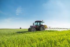 Bonde som besprutar det gröna vetefältet royaltyfri foto