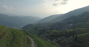 Bonde som går vidare Longji ris terrasserade fält stock video