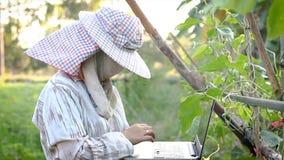 bonde som 4K använder bärbar datordatoren i den organiska lantgården som kontrollerar processen och rekordet, teknologi för åkerb stock video