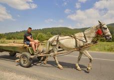 Bonde som rider en vagn Royaltyfri Bild