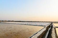 bondehögen gör den emballage förberedelsesaltdammet det salt havet thailand till Royaltyfria Foton