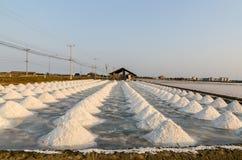 bondehögen gör den emballage förberedelsesaltdammet det salt havet thailand till Arkivbild