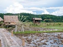 Bondehus i risfältet Risfältet i Thailand kan du finna centralen av landet Royaltyfri Fotografi