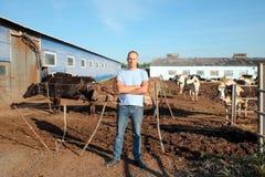 Bonden arbetar på lantgård med mejerikor Arkivfoto