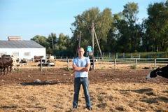 Bonden arbetar på lantgård med mejerikor Royaltyfri Foto