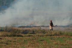 Bonden bränner de skördade risfälten arkivbild