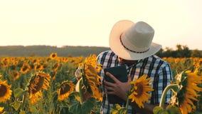 bonden g?r i ett blomma f?lt blommor f?r agronommanosamatrivaet och solrosfr? Aff?rsman med tableten arkivfilmer