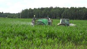 Bonden i traktor gödslar majs med bekämpningsmedlet på sommar 4K stock video