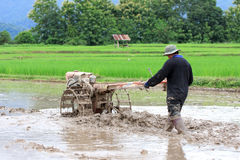 Bonden plogar med traktoren Att att förbereda sig att plantera ris i den regniga säsongen Royaltyfria Foton