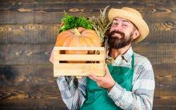 Bondesugrörhatten levererar nya grönsaker Hemsändning för nya grönsaker Ny organisk grönsakask Gladlynt man royaltyfri bild