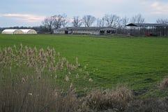 Bondgård och växthus Arkivbild