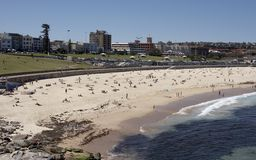Bondi Beach. NSW, Australia Stock Photos
